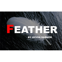 Feather by Kevin Parker – Video DOWNLOAD